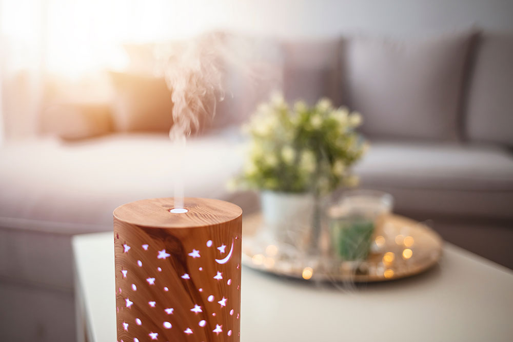 Essential oil diffuser sitting on table in front of couch next to plants